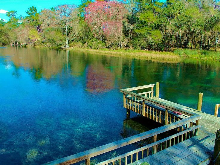 Cabin vacation rental in Dunnellon from VRBO.com! #vacation #rental #travel…