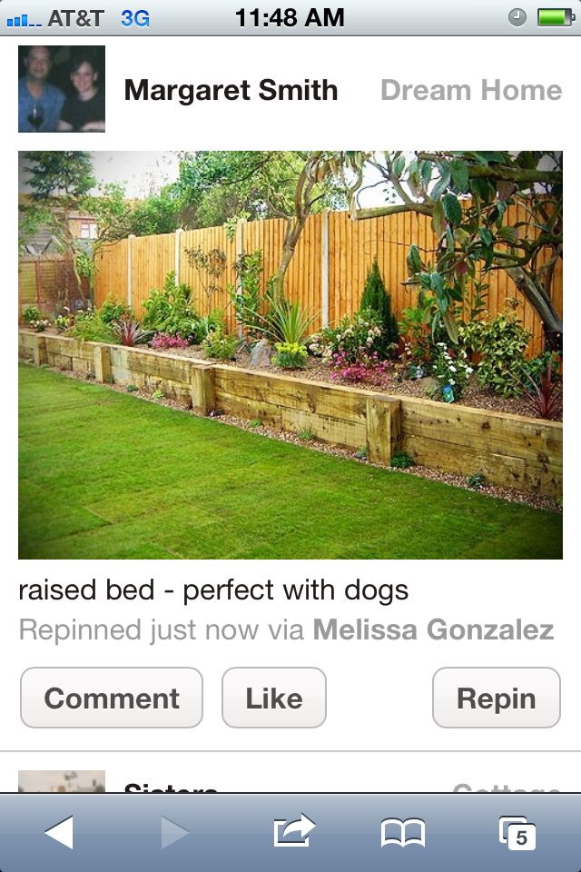 Along back fence idea - might keep Ollie Rotten in the yard....