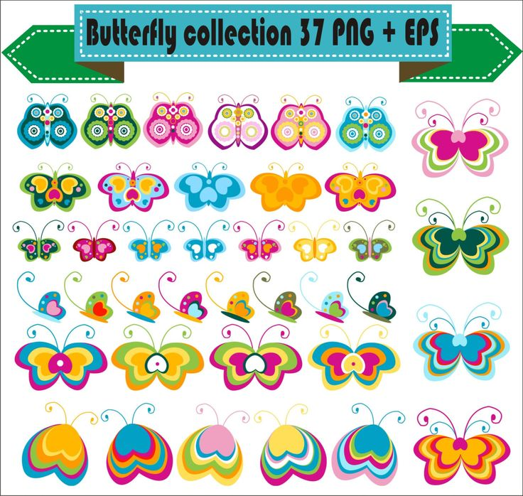 Butterfly Color Vector Clipart PNG EPS Set Digital Files Transparent Scrapbook Supplies Clip Art Instant Download by VectorArtShop on Etsy