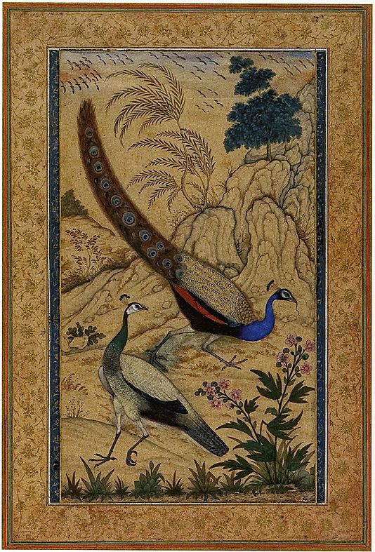 Peafowl  Attributed to Mansur     Date:      ca. 1610  Culture:      India (Mughal court at Agra)  Medium:      Opaque watercolor on paper  Dimensions:      Page: 14 1/2 x 9 7/8 in. (36.8 x 25.1 cm)  Classification:      Painting  Credit Line:      Lent by Private Collection  Accession Number:      SL.17.2011.36.1