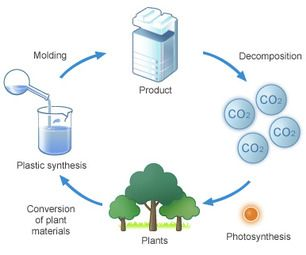 Easy Biodegradable Plastic