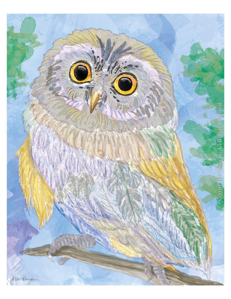Check out this lovely colorful owl! isn't he just lovely? Visit my #etsy shop to see this Owl Art Print Of Original Painting-8x10 #OwlPainting #OwlNurseryDecor #OwlGifts #Owl #WatercolorwallArt #OwlDecor #OwlPrint #gicleeprint #artprint #petportrait http://etsy.me/2toDyZg