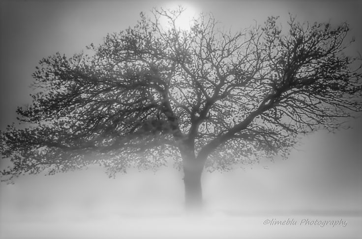 vaporous by limeblu photography on 500px