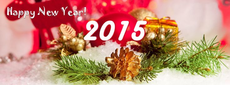 Wishing you a Happy New Year with hope that you will have many blessings in the year to come. http://ipt.pw/qNKdAo