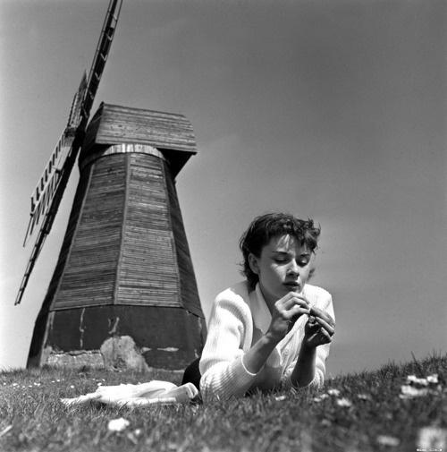 Audrey Hepburn served as a volunteer nurse in a Dutch hospital during World War II