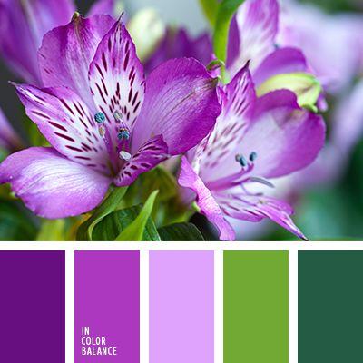 бледно-фиолетовый, зеленый и фиолетовый, малахитовый цвет, нефритовый цвет, оттенки зеленого, оттенки фиолетового, салатовый, светло-пурпурный цвет, фиолетовый, цвет зелени, цвет молодой зелени.