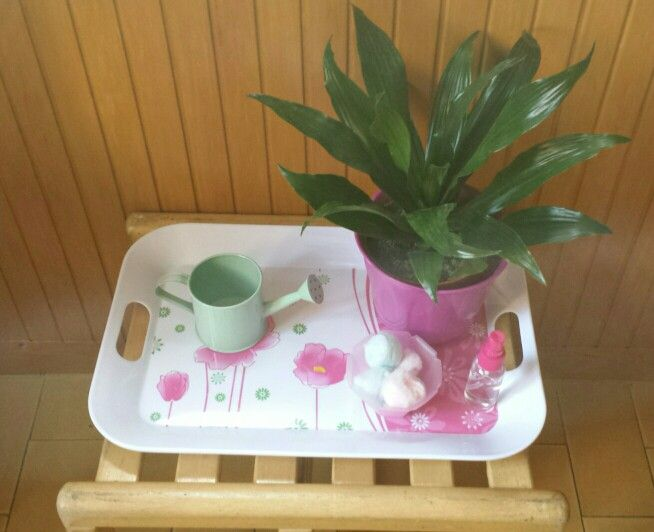 I miei vassoi ♡: prendersi cura di una pianta - pulire le foglie e dare da bere ad una pianta