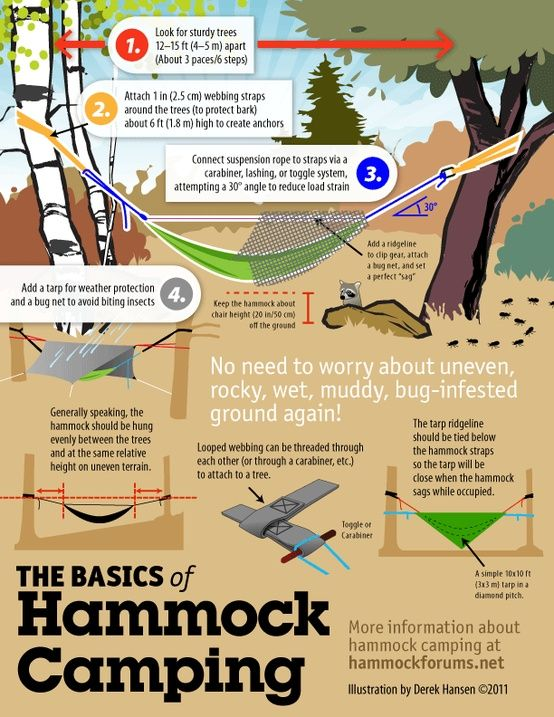The Basics of Hammock Camping (setup info graphic)