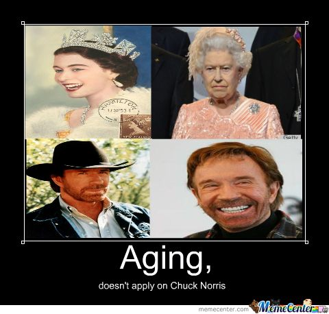 chuck norris memes and jokes