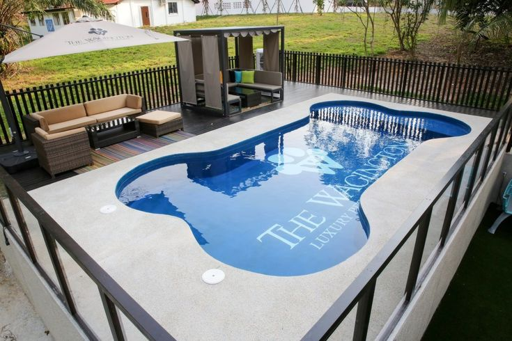 Best 25 Dog Swimming Pools Ideas On Pinterest Balcony For Dogs Diy Dog Yard And Potty