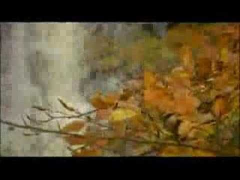 VIVALDI: Four Seasons (Spring).