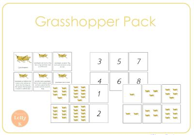 FREE - grasshopper themed mini pack. Includes quantity cards, numeral cards and grasshopper facts mini-book