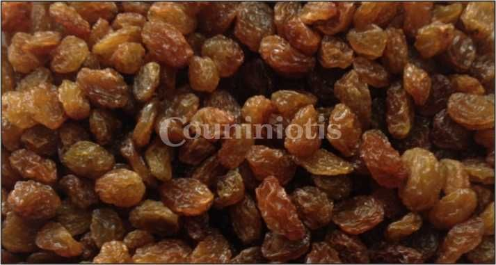 Cultivated and produced in the same way for thousands of years- sun dried!  In par with dietary and healthy concerns they're brough to you through the state-of-the-art Added Value processing, of the Couniniotis Grp. of Companies!