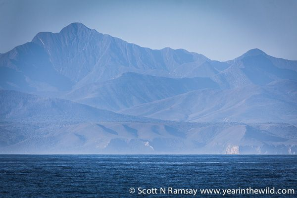 View of the Tsitsikamma mountains across the bay from Robberg...