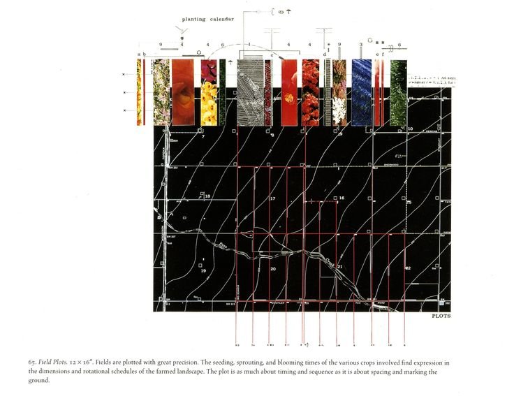 Real Time 911 >> Field Plots, drawing by James Corner | Site Analysis | Pinterest | Drawings, James d'arcy and Fields