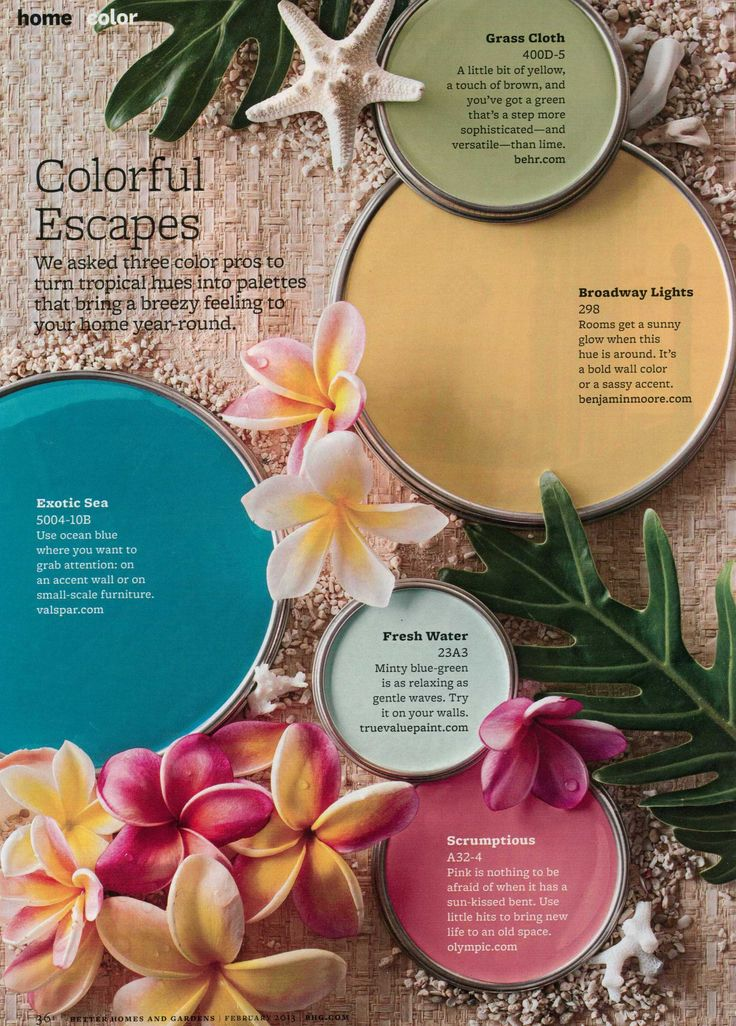 Colorful Escapes...yes yes yes, this will be my whole house color. Tropical  ...