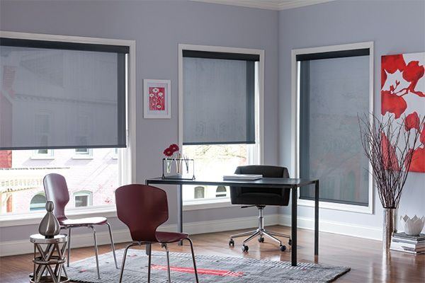 Product: Solar Collection: Sheer Color: 2410 Options Shown: Solar Shades with Continuous-loop Lift and Fascia in Black 939: SheerWeave 2410, Charcoal/Gray V2224.