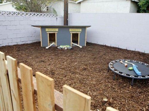 backyard ideas for dogs area