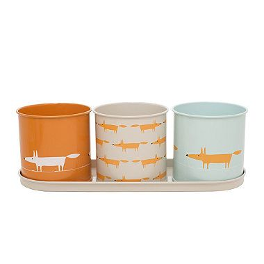 Scion Mr Fox Herb and Plant Pots - from Lakeland