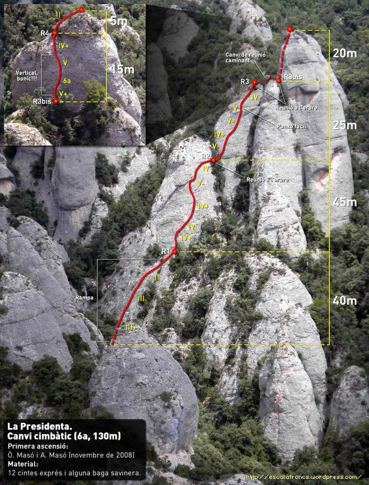 Via Canvi Climbatic a La Presidenta,La plantació