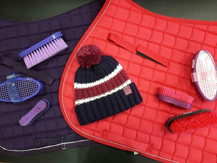 Faites le plein de couleur avec  ces nouveaux tapis et ces brosses de pansage colorées ! www.chambriere.ca