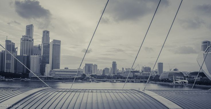 #cadotravels #octavcado #goodmorning #singapore #financialdistrict #mbs #marinabaysands #city #megapolis #skyscape #birdseyeview #wonderfulview #asia #exciting #tourism #travel #instatravel #adventure #horizon #explore #freedom #bw #blackandwhite #b_w #sky #momondorussia #triplook #momondo