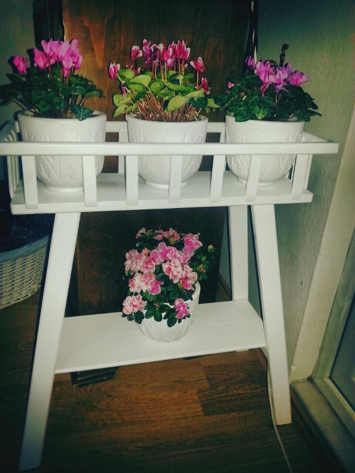 ahşap wood  çiçeklik  home design