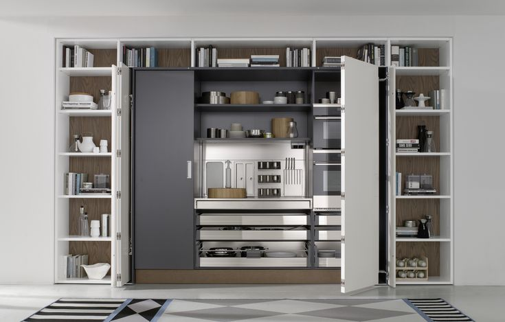 Whether your goal is a contemporary european kitchen for Modern european kitchen designs