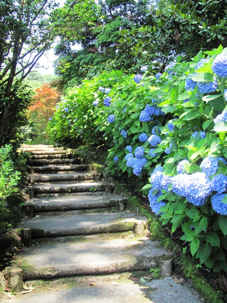 Flower Garden Path 149 best garden paths - stone, gravel, brick, concrete, mulch
