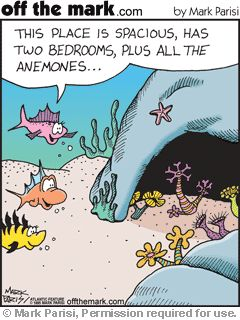 Everyone wants a home with all the anemones! Funny real estate cartoon.