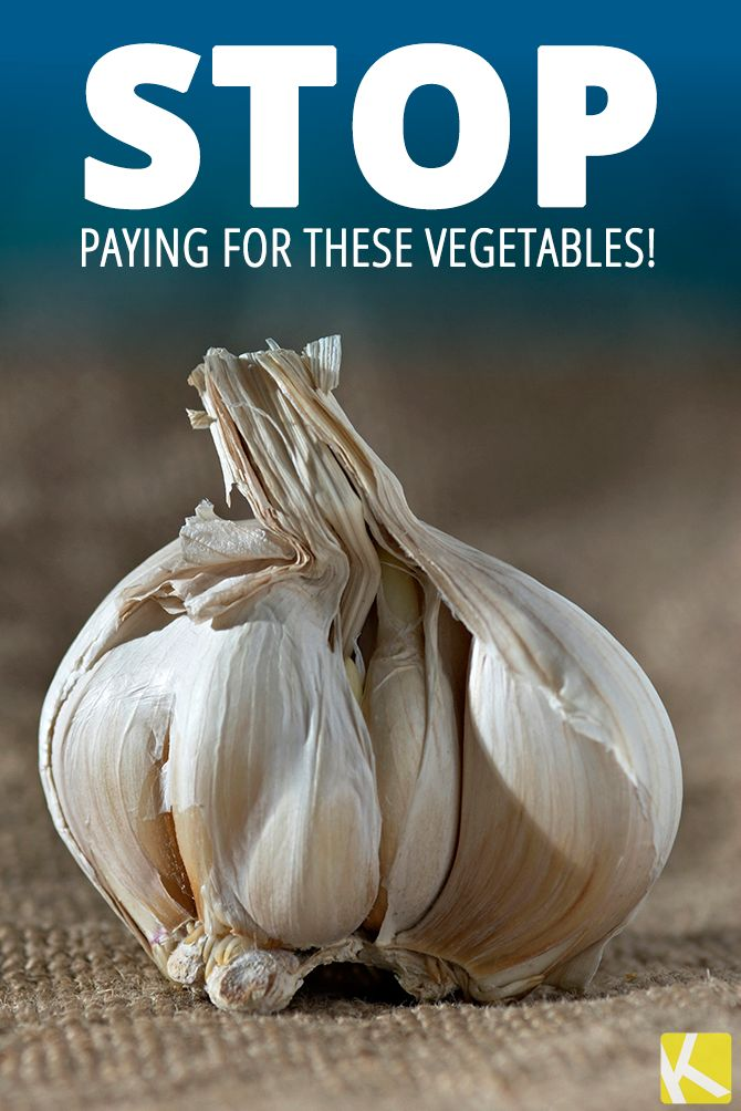 Why buy these vegetables when you can easily grow your own?!