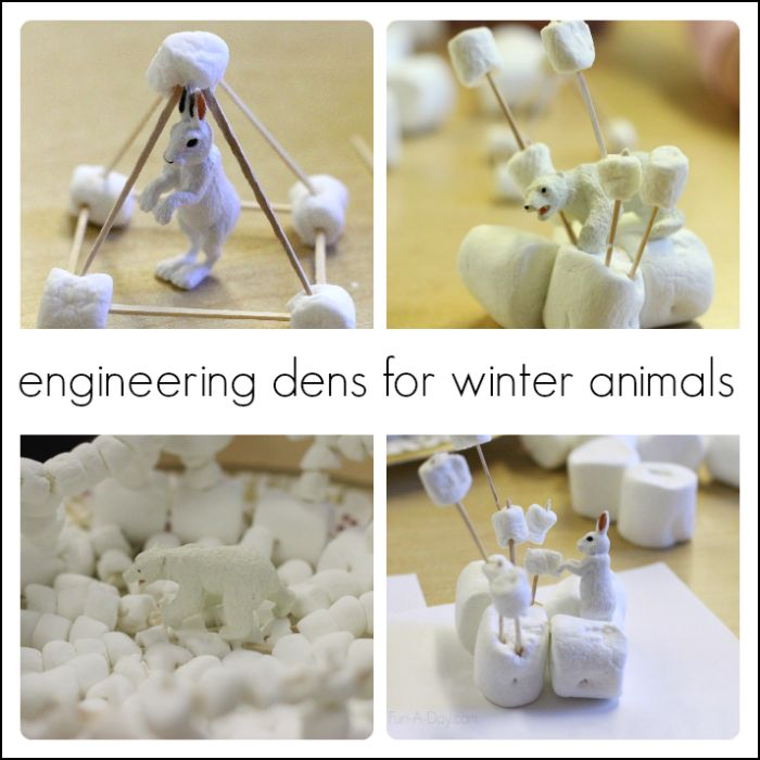 Creating dens for winter animals - an engineering project for kids