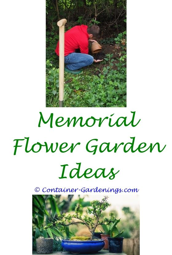 monrovia garden ideas - olive garden bartender tips.installing ...