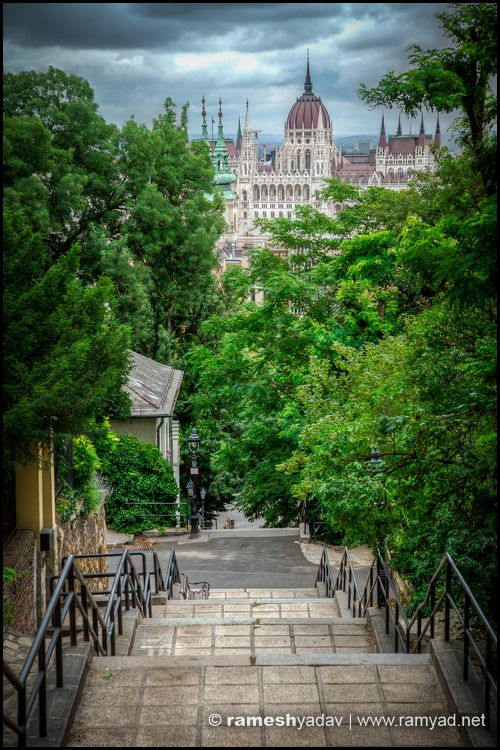 Hungarian Parliament through the trees