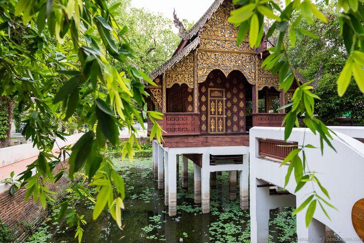 Фотоотчёт Таиланд Чиангмай (старый город, храмы, буддизм, Ват Чианг Ман, Ват Прахат Дой Сутхеп, бар Rider's Corner, вид на город, статуя Будды).