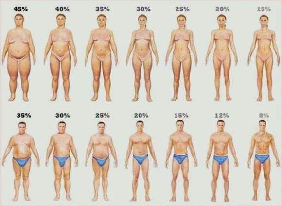come perdere 2 grasso corporeo in 2 settimane