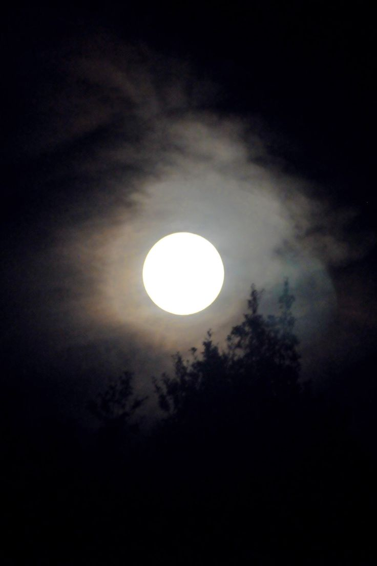 High Val Parma Forest  -  The Lagoni Full moon over Lagoni