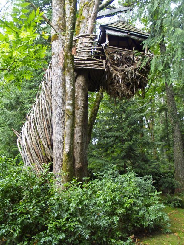 Famous Tree Houses 17 beste ideeën over treehouse builders op pinterest - boomhutten