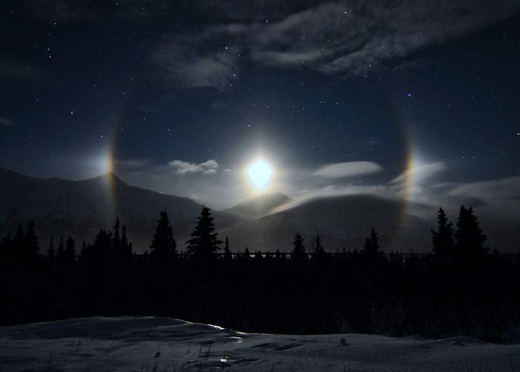 Alaskan Moondogs