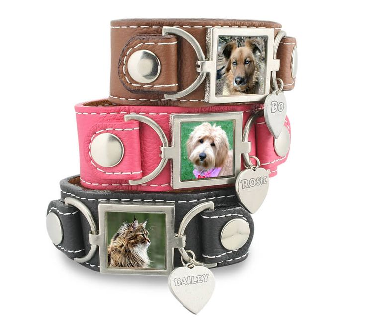 The Molly Photo Charm Bracelet Pet Memorial Jewelry is uniquely designed thin leather slide charm bracelet with photo charms and dog charms.