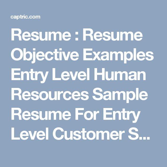 Cv Examples Uk Customer Service