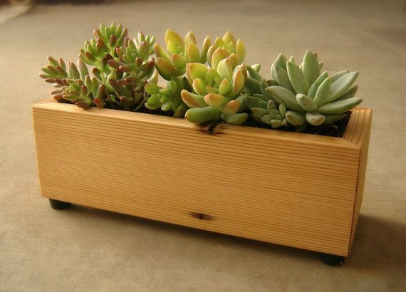 Succulent Planter Box In Recycled Cedar With Gravel And