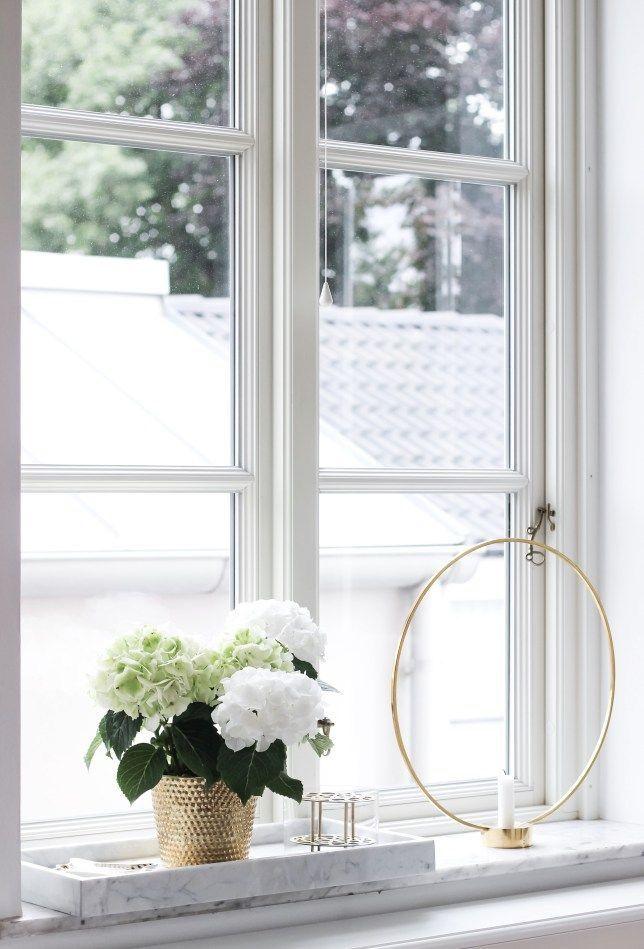 130 besten Hortensia Bilder auf Pinterest Hortensien, Pflanzen und - Pflanzen Deko Wohnzimmer