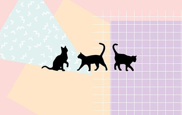 Black Cat Desktop Wallpaper Imagem De Fundo De Computador