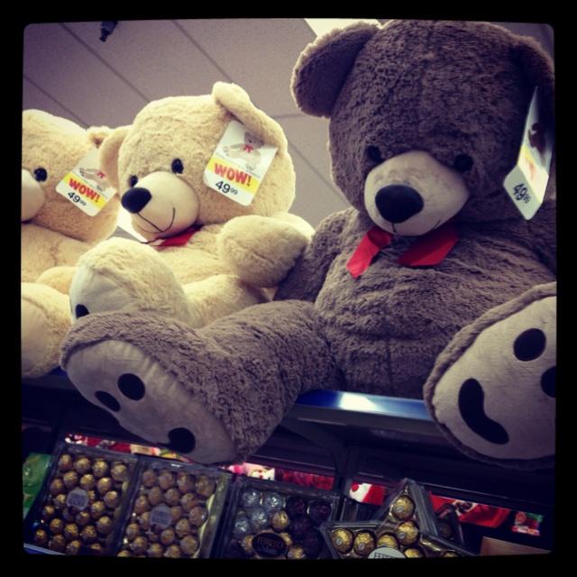 10 Best Teddy Images On Pinterest Teddybear Giant Teddy Bear And