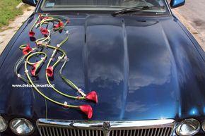 Dekoracja auta z czerwoną cantedeskią