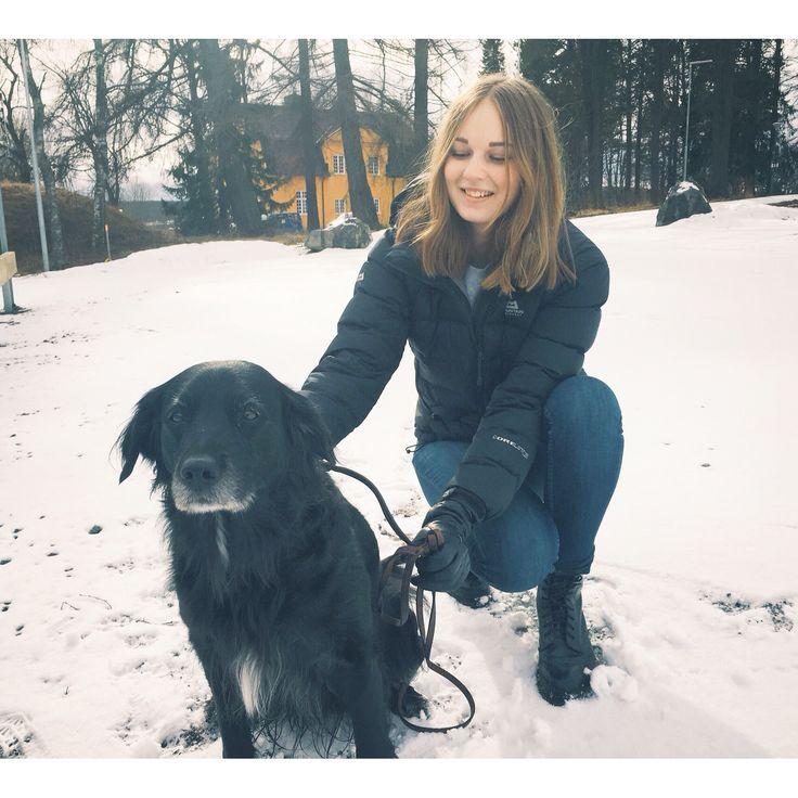 Salsa the dog