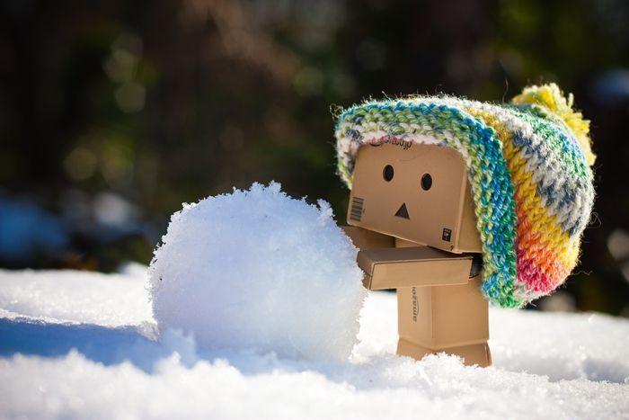 Mini Danbo loves snow