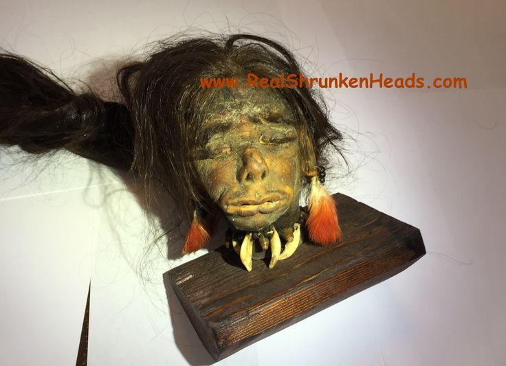 Real Shrunken Head For Sale! Info@RealShrunkenHeads.com
