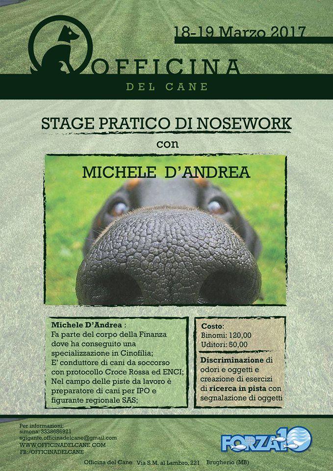 Nosework a tutta pratica con Michele D'Andrea all'Officina del Cane :http://www.qualazampa.news/event/nosework-a-tutta-pratica-con-michele-dandrea-allofficina-del-cane/